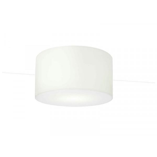 Harryplafondlamp-Carpyen