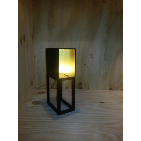 Skinner-box Table