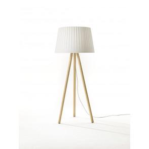 Agata Wood