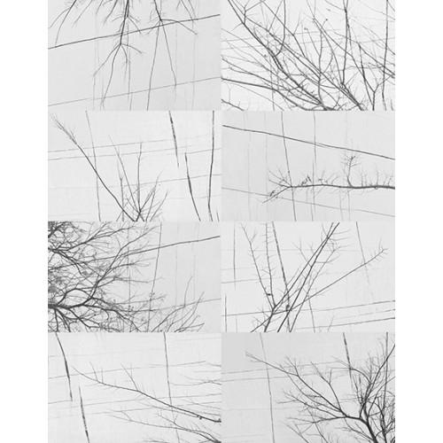 Bois d'Hiver Contemporary 2017