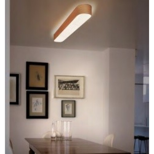 Plafond - en wandlamp l-Club LZF